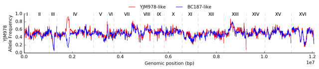allele_freq_genome.png